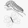 Coloring Page of Caterpillar and Butterfly