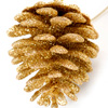 Craft: Glitter Pine Cones