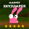 Online 2 Player Game: Madpet Sky Jumper