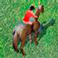 Show Jumping Online Game