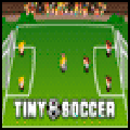 Tiny Soccer Sports Game