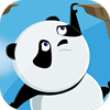 Rolling Panda Online Action Game